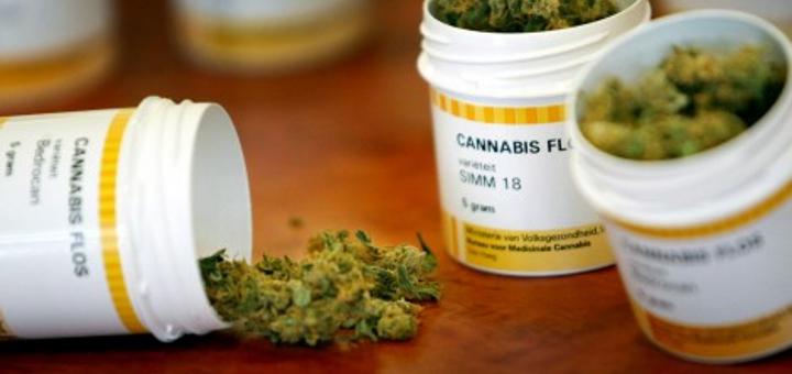 medyczna-marihuana-w-polsce-sondaz