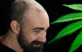 guz mózgu a medyczna marihuana
